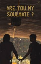 Are You My Soulmate ? by SolidAppelSap