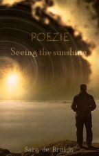 Poëzie: Seeing the Sunshine [EN/NL] door TerrarianSara