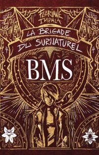 La Brigade du Surnaturel - 1 - Limbus Patrum cover