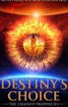Destiny's Choice cover