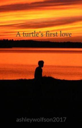A turtle's first love by ashleywolfson2017