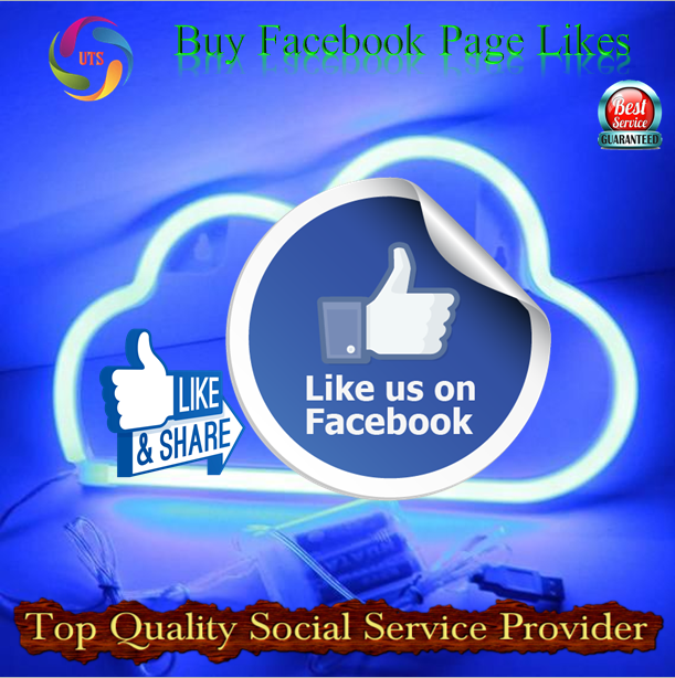 Increase your business customer by liking your page from US platforms