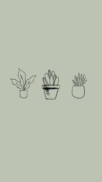 Aesthetic Wallpapers Minimalist Plants Vi Wattpad