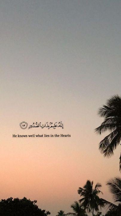 Les Merveilles De L Islam Fond D Ecran Islam Wattpad