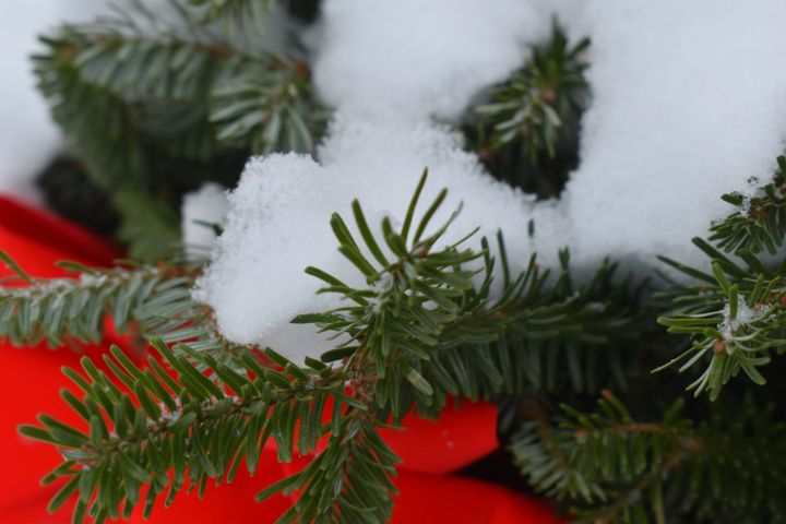 #7 Wreaths and Snow (1)