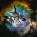 -Galaxy_Kitten-