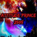 AttitudePrince2505