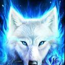 Blessedwolf860