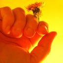 ChristianCommunity