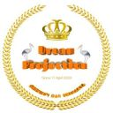 Dreamprojection_