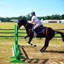 EquestrianGal