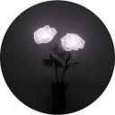 Evelyn_Esher