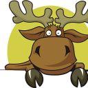 Moose0707