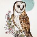 Owl_Queen36