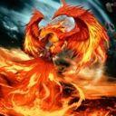 PhoenixWriter621