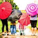 Qing-Wan