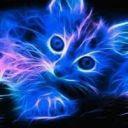 Raven_Da_Music_Kitty