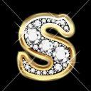 Sania061304