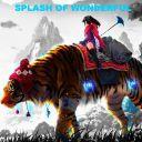 SplashOfWonderful