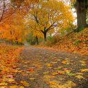 Supernatural961
