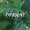 TR7DENT