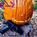 TactitionPumpkin