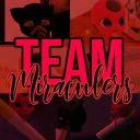 TeamMiraculers