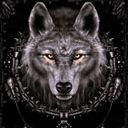 ThewolfofDreams1127
