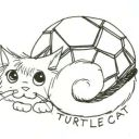 TurtleCat5