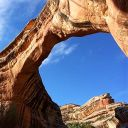 WattAwards2021