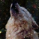 adamantiumwolf15