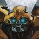 bumblebee8643