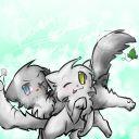 catlover50676
