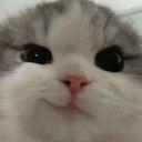 jellykookie_