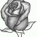 rosemariedorado3