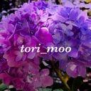 tori_moo