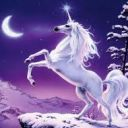 unicornsrule